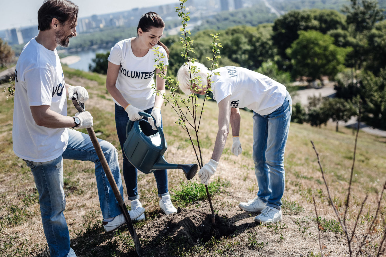 Positive nice volunteers standing around the tree